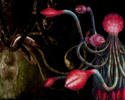 Resident evil fan a new blood for Plante 42 resident evil